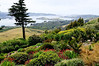 Otago Peninsula-Larnach Castle grounds