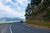 Dunedin-Otago Peninsula-No place in New Zealand is complete without a narrow, hair-raising, twisty road. For Dunedin, this is the Otago Peninsula
