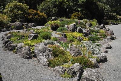 rock garden in Christchurch Botanic Gardens