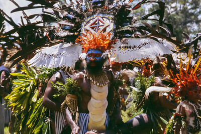 Wings, Hagen Show, Papua New Guinea, 2003
