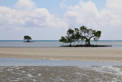 Beach without a name! @ Bloomfield Track. Daintree NP, Queensland, Australië.