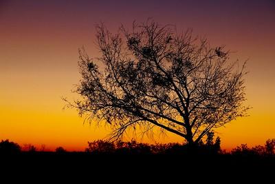 Sunset @ Gulf of Carpentaria. Karumba Point, Queensland.