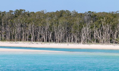 Coongul Creek, Fraser Island. Hervey Bay, Queensland, Australië.