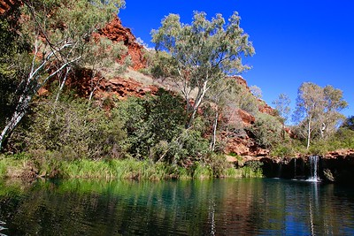 Fern Pool, Dales Gorge, Karijini NP, Pilbara. WA, Australië.