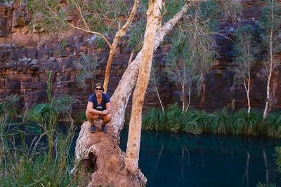 Dales Gorge, Karijini NP, Pilbara. WA, Australië.