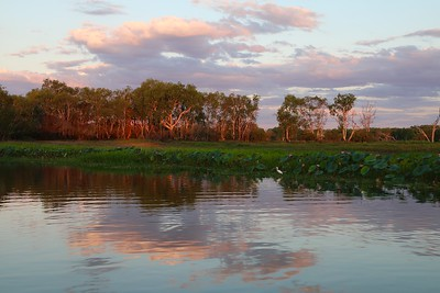 Sun sets in Jim Jim Billabong @ Yellow Water Cruise. Kakadu National Park, Top End,  Northern Territory, Australië.