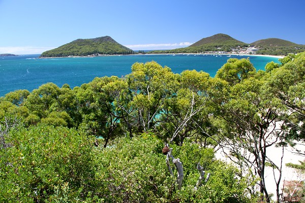 Nelson Head, PORt Stephens