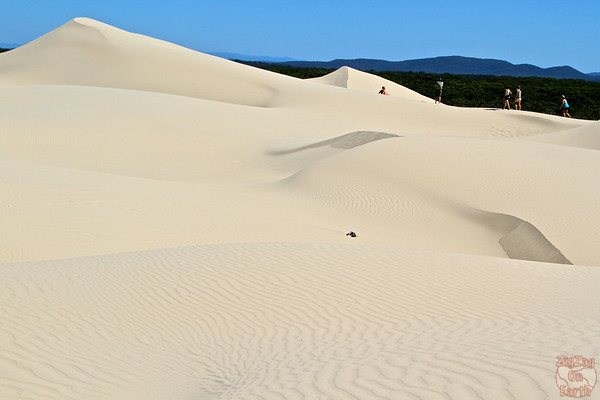 Dunes of Stockton Beach 1
