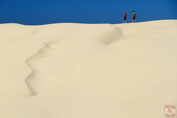 Dunes of Stockton Beach 2