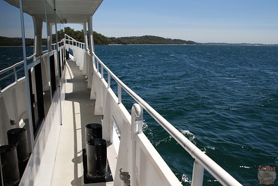 Dolphin cruise port stephens 5