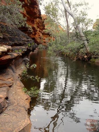 Kings Canyon Hike- Garden of Eden - Australia 14