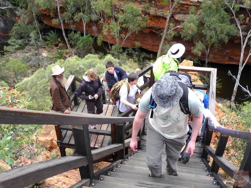 Kings Canyon hike difficulty - Australia