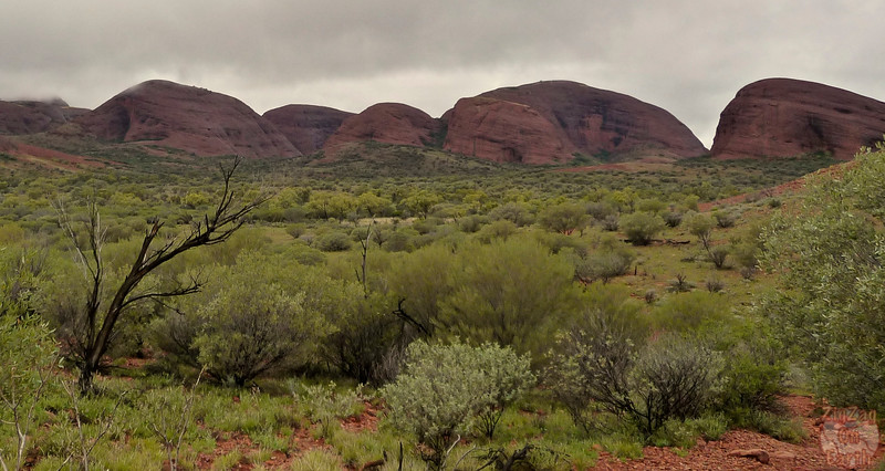 Valley of the Wind walk Kata Tjuta photo 5
