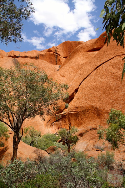 Uluru base walk photo 3