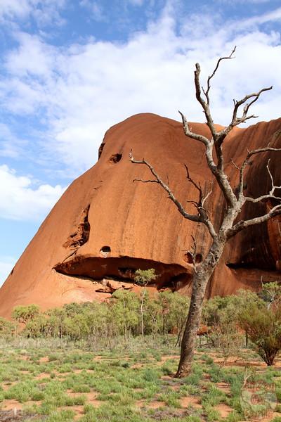 Uluru base walk photo 7