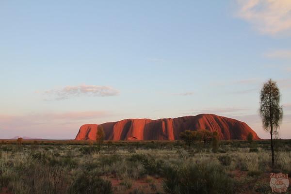 Sunrise Uluru photo 1