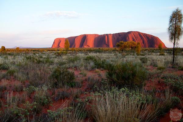 Sunrise Uluru photo 2