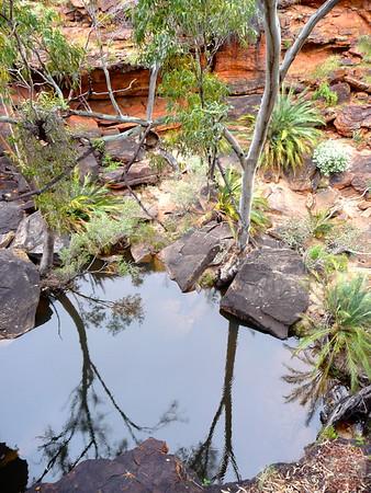 Kings Canyon Hike- Garden of Eden - Australia 11