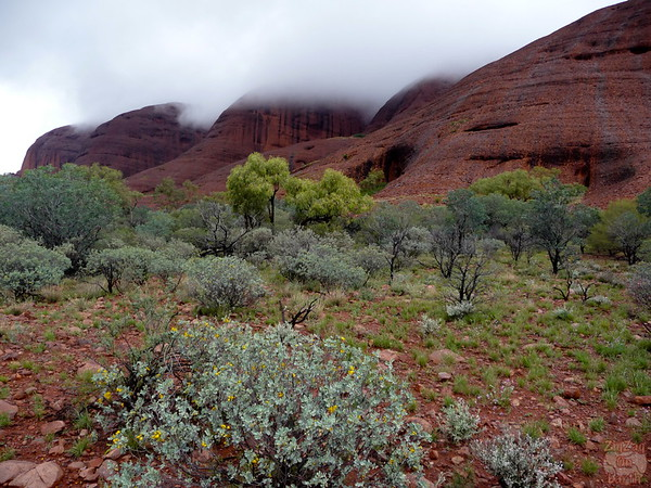 Things to do Kata Tjuta: Valley of the Wind walk