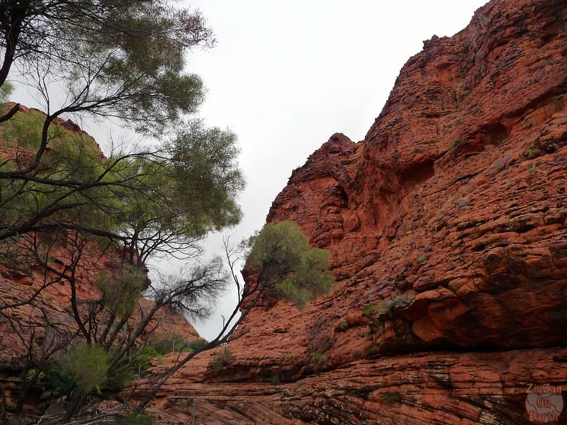 Kings Canyon Hike - Australia 2