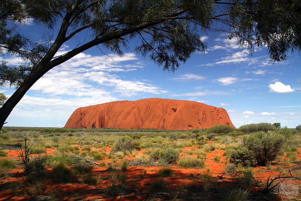 Things to do Uluru: car platform