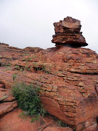 Kings Canyon Hike - Australia 9