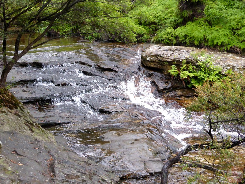 Wentworth Falls Track - Blue Mountains, Australia 4