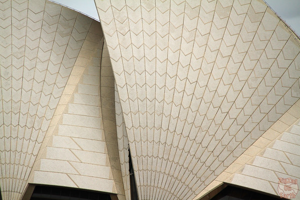 Photographing Sydney Opera house from ferry terminal 2