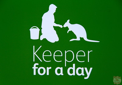 Keeper for a day logo