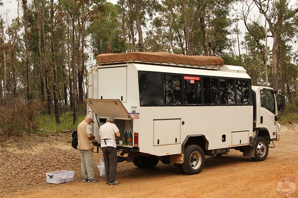 4WD truck for Blue Mountain Tour
