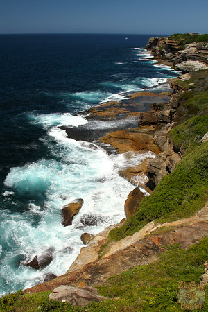 Bondi to Cogee walk: Cliffs 2