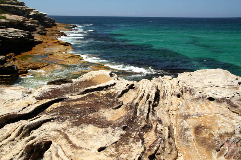 Bondi to Cogee walk: Tamarama to Bronte 4