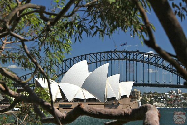 Photographing Sydney Opera house from Macquarie chair 1