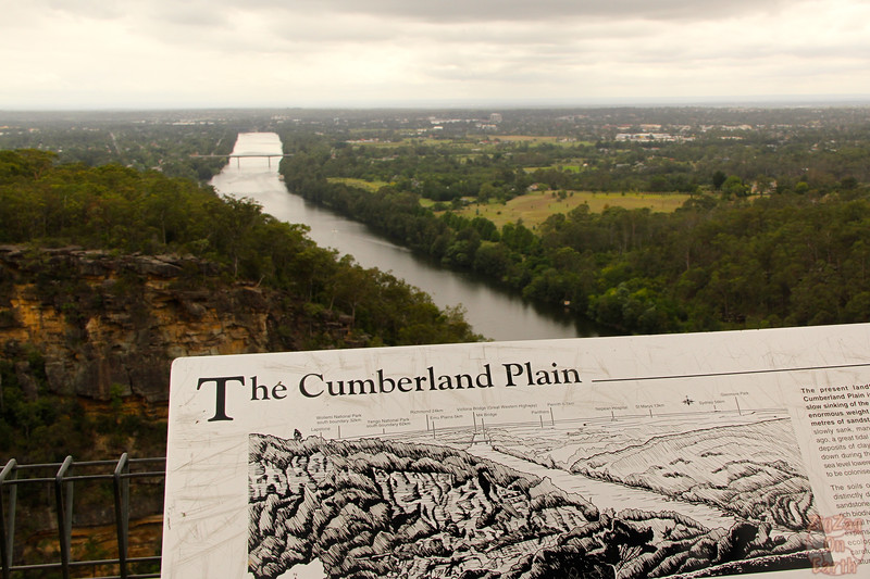 Cumberland plain viewpoint