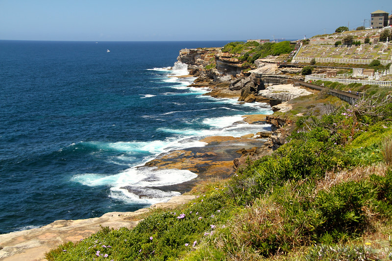 Bondi to Cogee walk: Cliffs 1