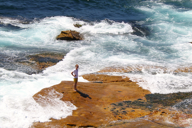Bondi to Cogee walk: rocks 4