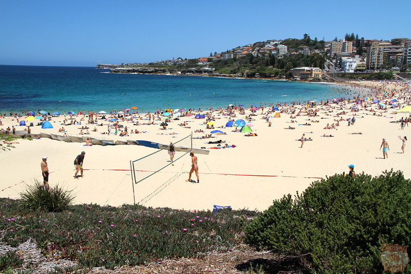 Bondi to Cogne walk: Cogee Beach