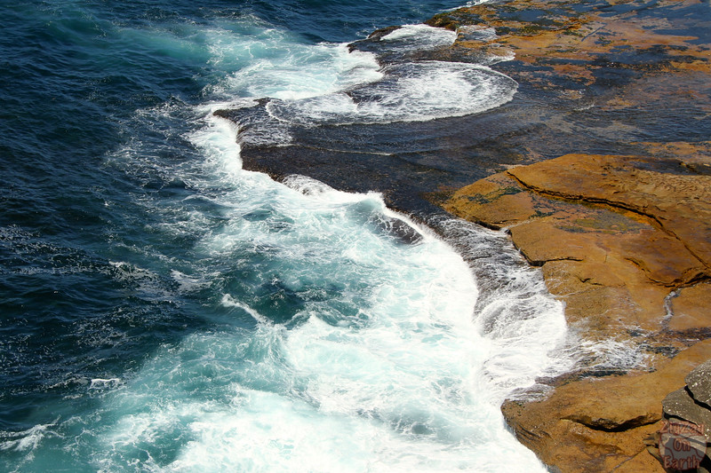 Bondi to Cogee walk: Cliffs 3