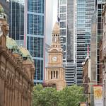 Sydney-8692