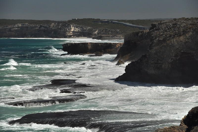 Australia '14 -  935