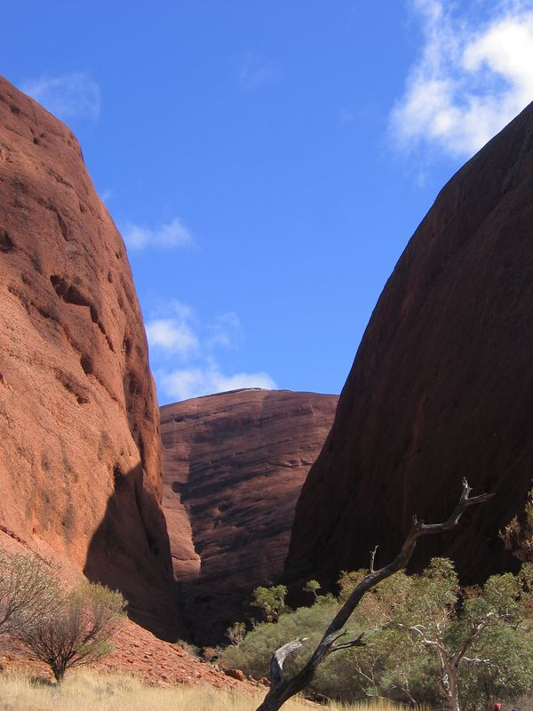 Even more Kata Tjuta