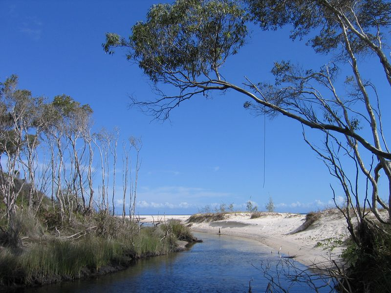Creek draining to the ocean, Fraser Island