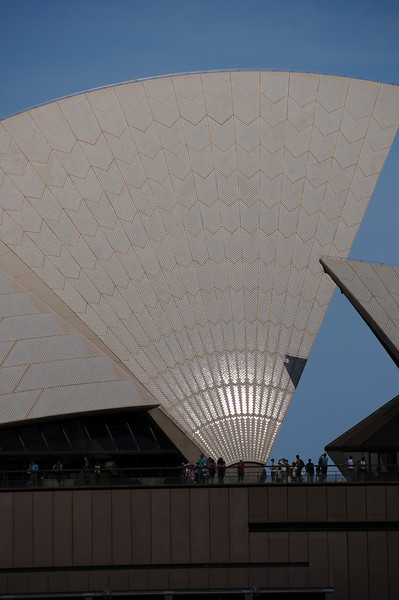 The Sydney Opera House main sail