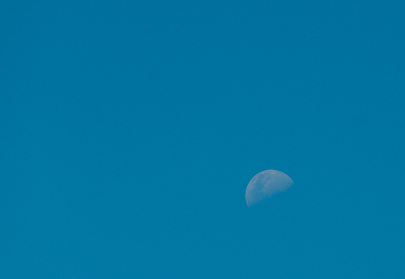 The moon from Sydney