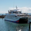 Eye-Spy whale watch boat at Redcliffe