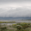 We had beautiful weather when we left Christchurch, sunny and about 16 degrees (61 F). But about 40 km south of the city we saw this cold front approaching. As we went through the front, the temperature dropped to 8 degrees (46 F) in just a few minutes.