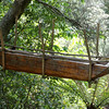 """Trap for birds<br /> Te Puia, the New Zealand Maori Arts and Crafts Institute  <br /> <a href=""""http://www.tepuia.com"""">http://www.tepuia.com</a>"""