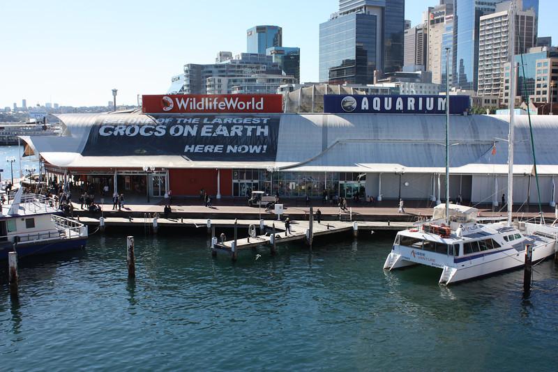 Aquarium near Darling Harbour in Sydney.