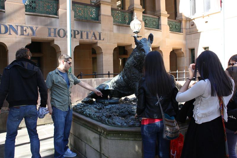 Daniel, David, Bianca, and Grace touching the wild boar.