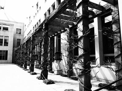 Courtyard, Parliament House